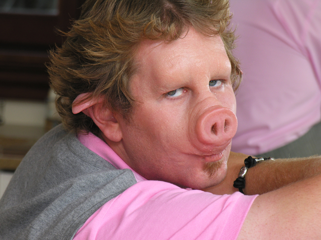 Related Keywords & Suggestions for human pig nose